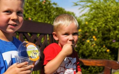 Interview mit kribbelbunt.de – Was steckt hinter SnacKid?